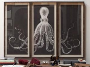 NaturalCuriositiesOctopusStudybodner_large