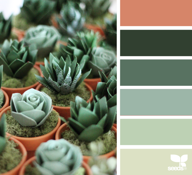 Paper Succulents by Design Seeds®. Image via: @handmadebysarakim