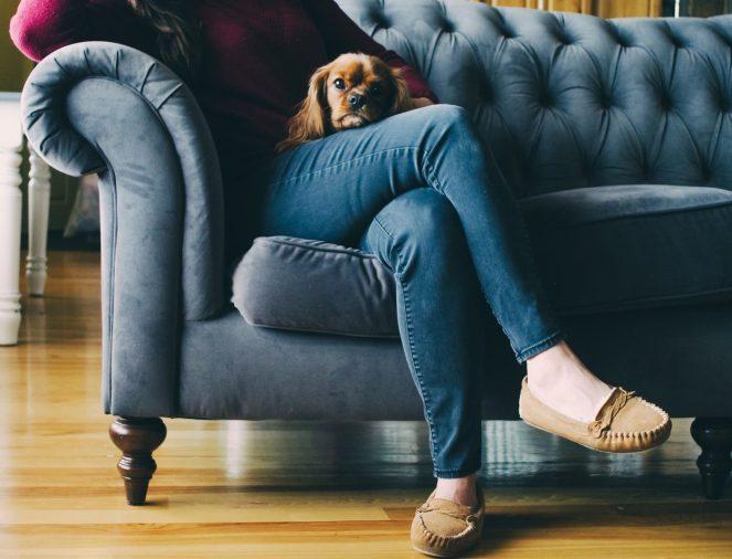 Modern Domestic Woman Elizabeth Rago Writer Happy Self Care